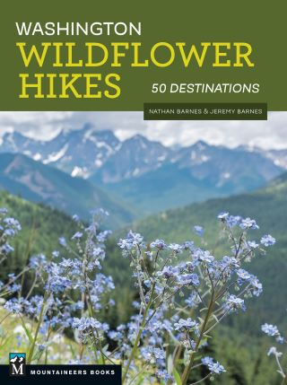 Washington Wildflower Hikes