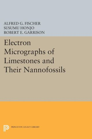 Electron Micrographs of Limestones and Their Nannofossils