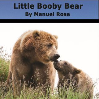Little Booby Bear