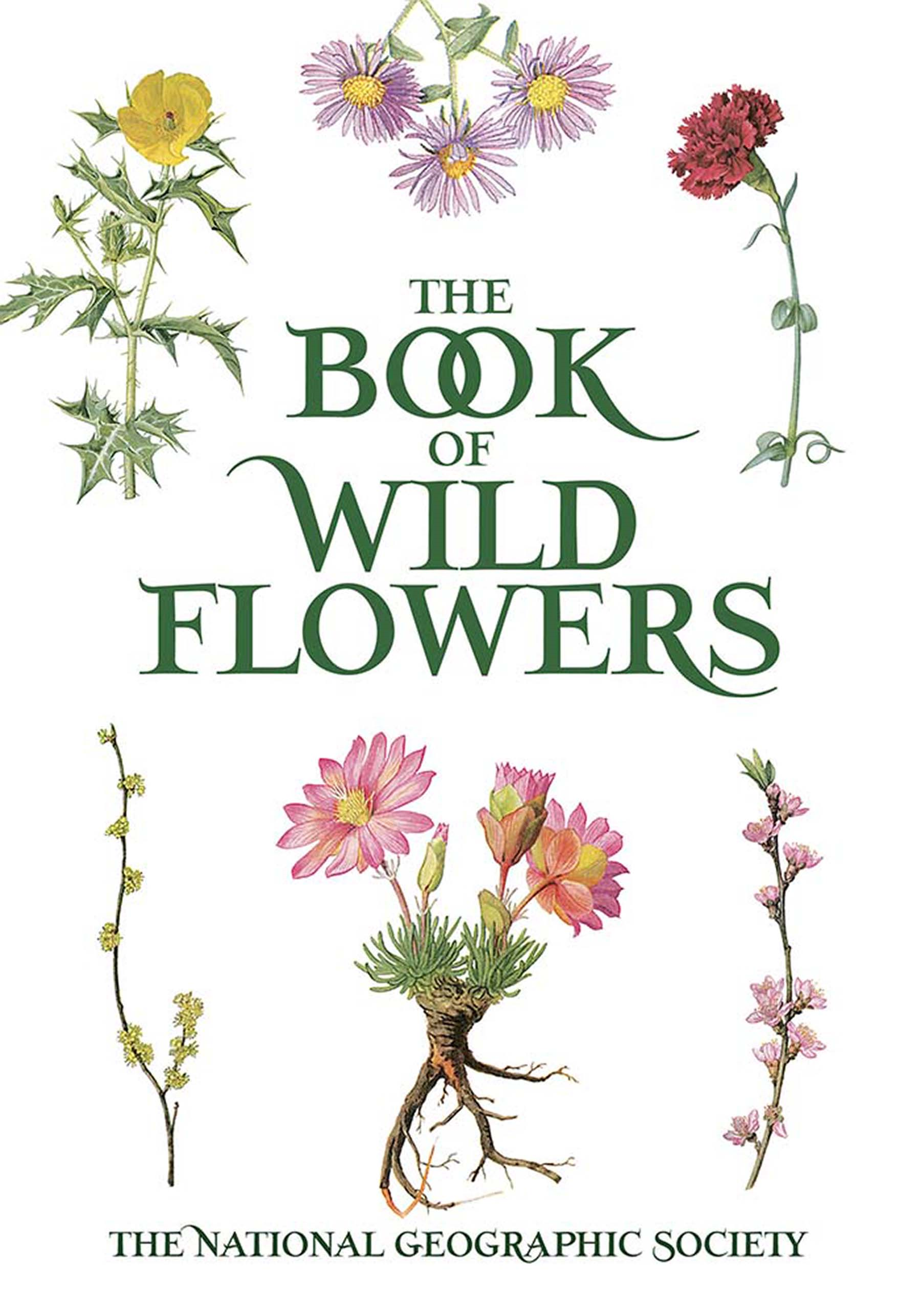 The Book of Wild Flowers