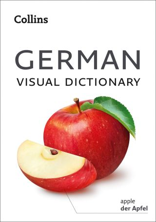 German Visual Dictionary: A photo guide to everyday words and phrases in German (Collins Visual Dictionary)