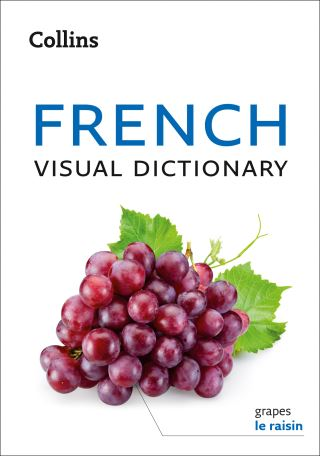 French Visual Dictionary: A photo guide to everyday words and phrases in French (Collins Visual Dictionary)