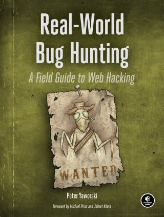 Real-World Bug Hunting