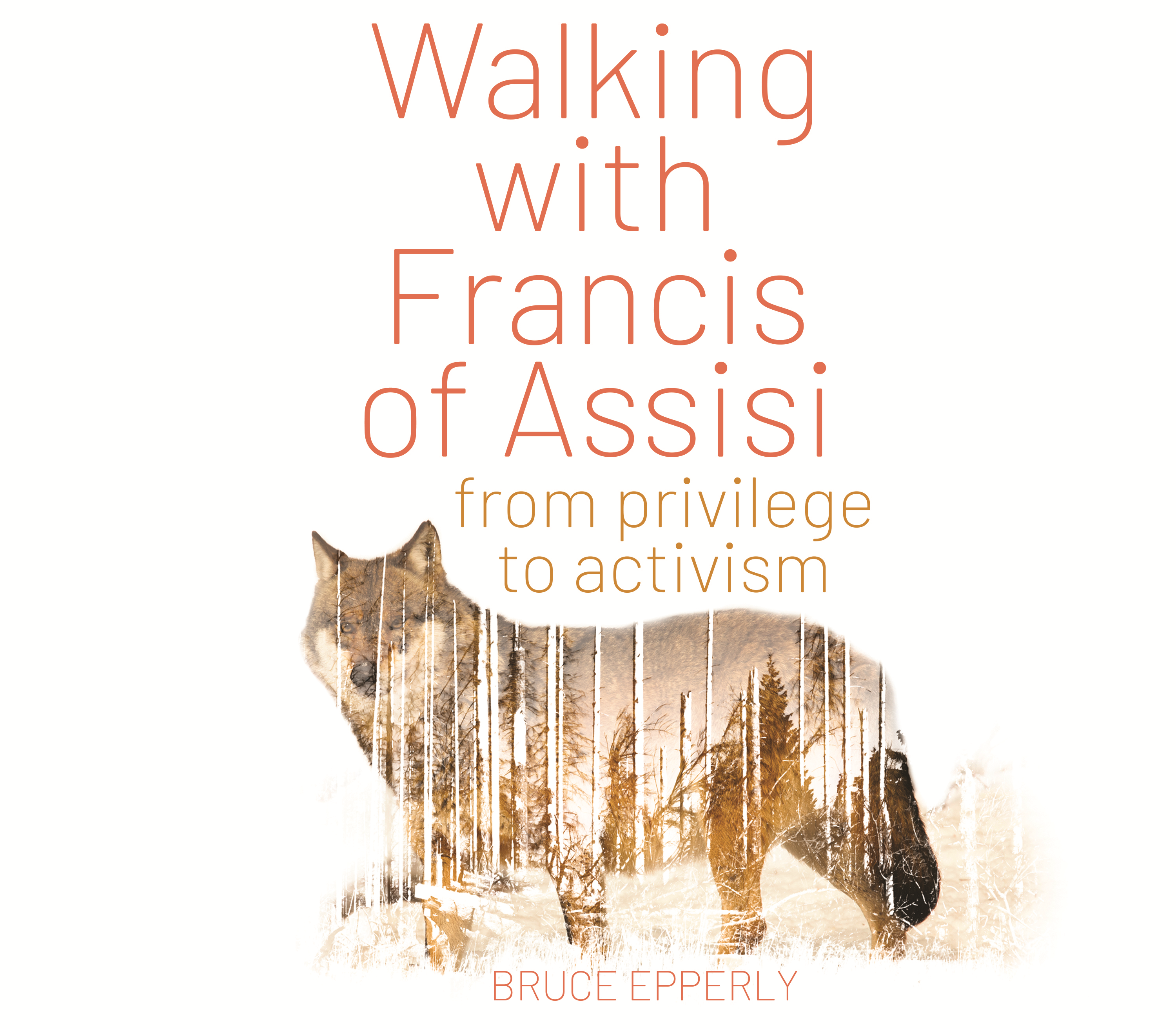 Walking with Francis of Assisi