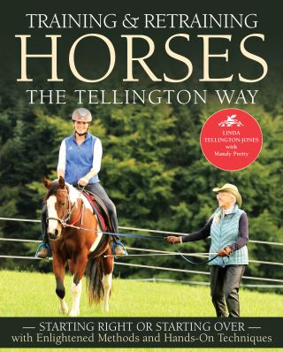 Training and Retraining Horses the Tellington Way