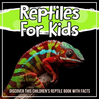 Reptiles For Kids: Discover This Children's Reptile Book With Facts
