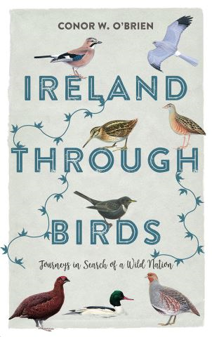 Ireland Through Birds