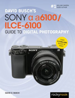 David Busch's Sony Alpha a6100/ILCE-6100 Guide to Digital Photography