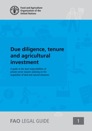 Due Diligence, Tenure and Agricultural Investment