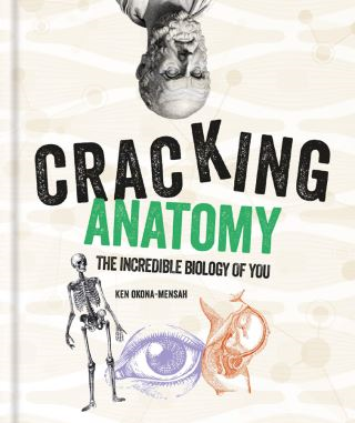Cracking Anatomy