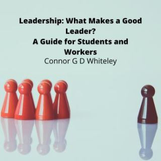 Leadership: What Makes a Good Leader?