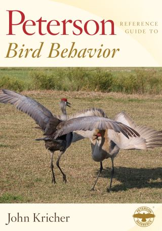 Peterson Reference Guide to Bird Behavior