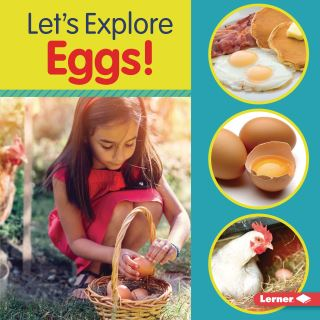 Let's Explore Eggs!