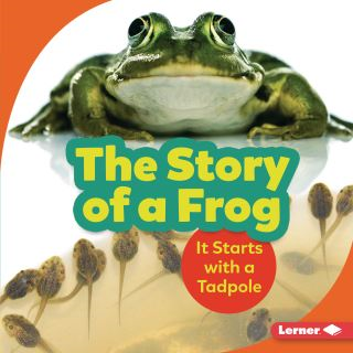 The Story of a Frog