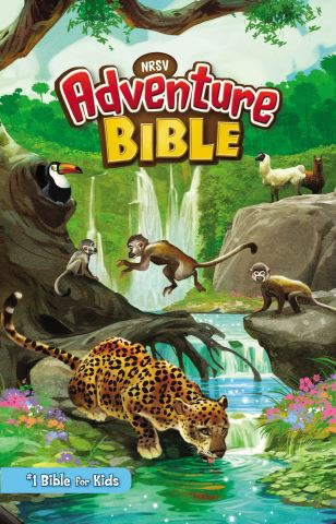NRSV, Adventure Bible, eBook