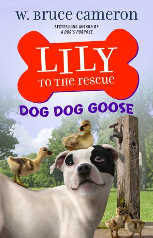 Lily to the Rescue: Dog Dog Goose