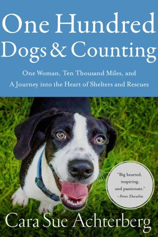 One Hundred Dogs and Counting