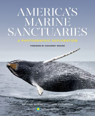 America's Marine Sanctuaries