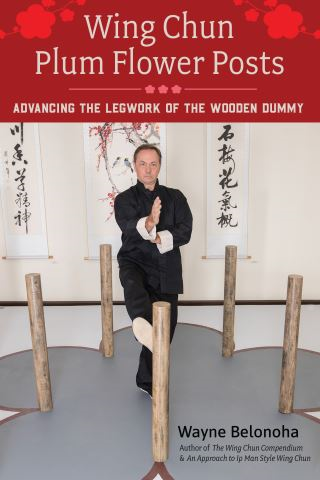 Wing Chun Plum Flower Posts