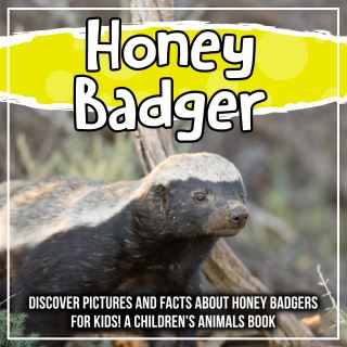 Honey Badger: Discover Pictures and Facts About Honey Badgers For Kids! A Children's Animals Book