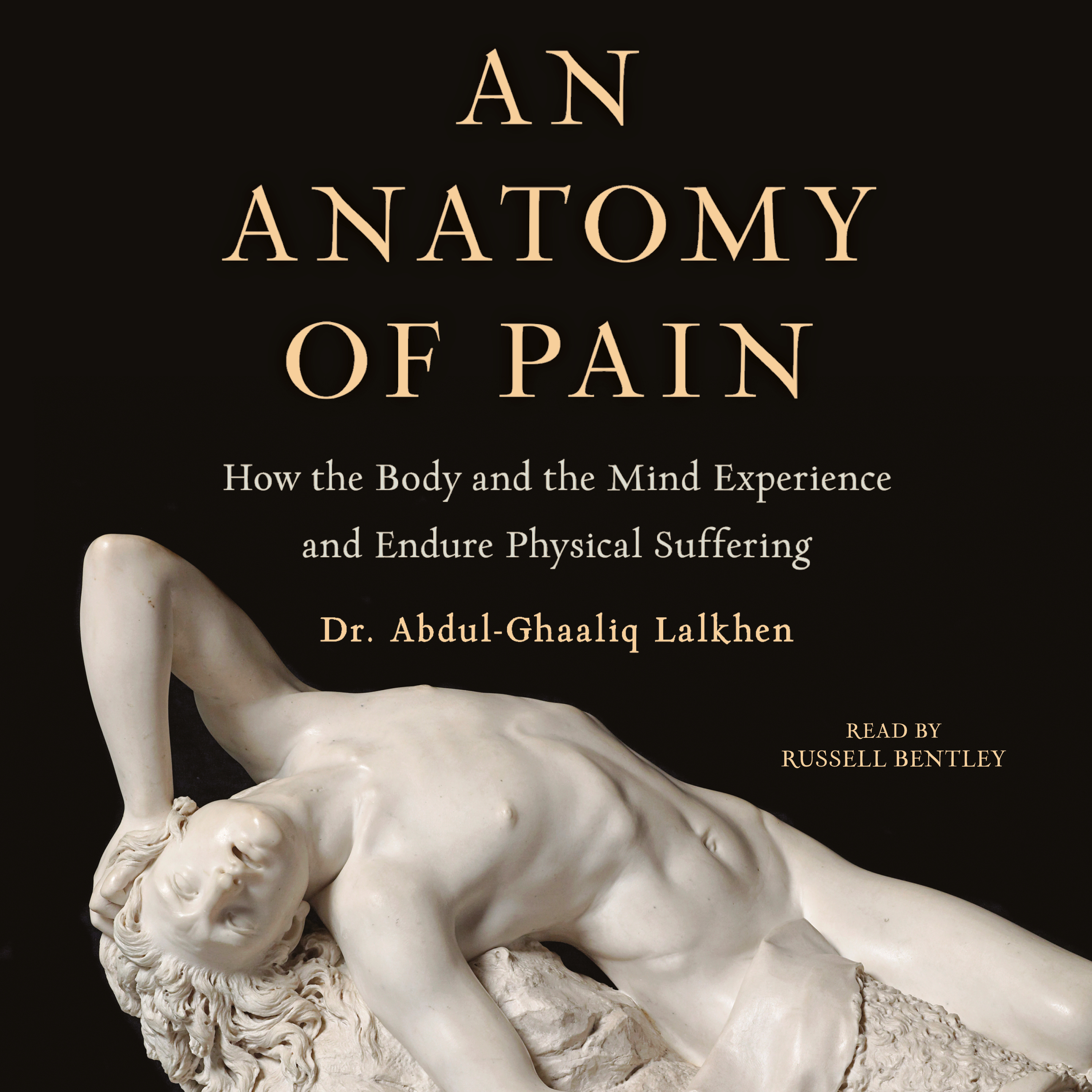 An Anatomy of Pain