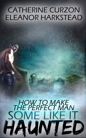 How to Make the Perfect Man