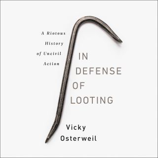 In Defense of Looting