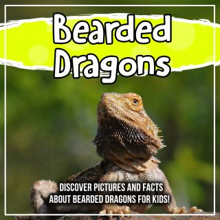 Bearded Dragons: Discover Pictures and Facts About Bearded Dragons For Kids!