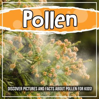 Pollen: Discover Pictures and Facts About Pollen For Kids!