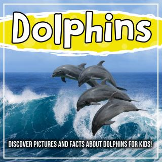 Dolphins: Discover Pictures and Facts About Dolphins For Kids!