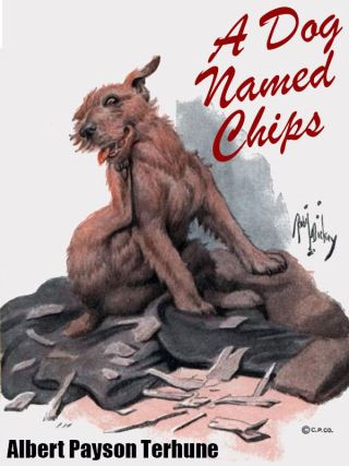A Dog Named Chips
