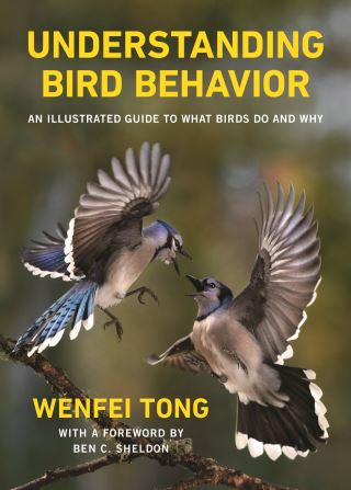 Understanding Bird Behavior