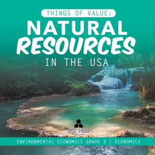 Things of Value : Natural Resources in the USA | Environmental Economics Grade 3 | Economics