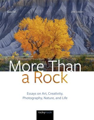 More Than a Rock, 2nd Edition