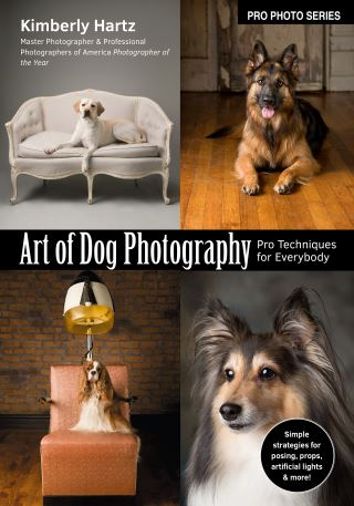 Art of Dog Photography