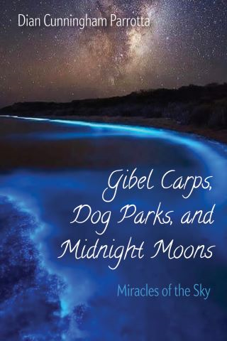 Gibel Carps, Dog Parks, and Midnight Moons