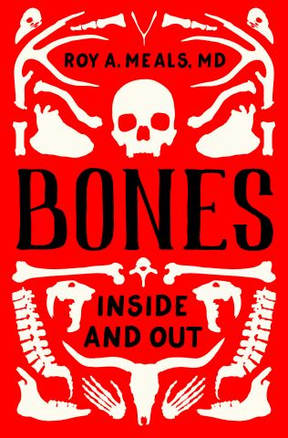 Bones: Inside and Out