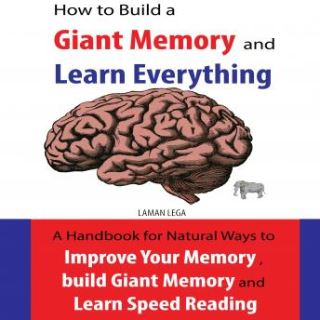 How to Build a Giant Memory and Learn Everything