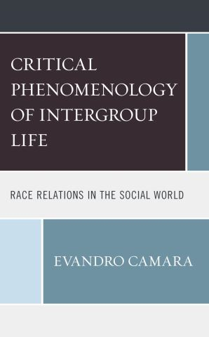 The Critical Phenomenology of Intergroup Life
