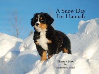 A Snow Day for Hannah