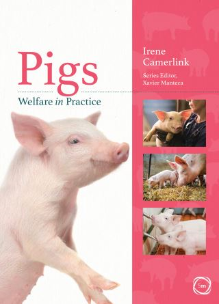 Pigs Welfare in Practice