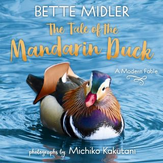 The Tale of the Mandarin Duck