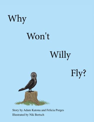 Why Won't Willy Fly?