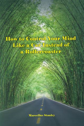 How to Control Your Mind Like a Car Instead of a Rollercoaster