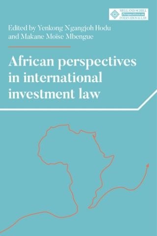 African perspectives in international investment law