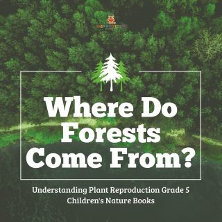 Where Do Forests Come From? | Understanding Plant Reproduction Grade 5 | Children's Nature Books