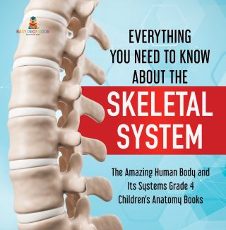 Everything You Need to Know About the Skeletal System | The Amazing Human Body and Its Systems Grade 4 | Children's Anatomy Books