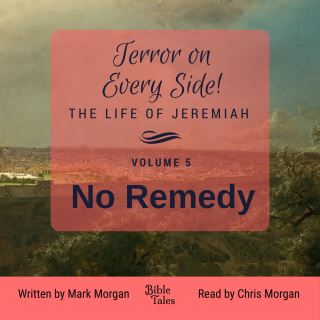 Terror on Every Side! The Life of Jeremiah Volume 5 – No Remedy