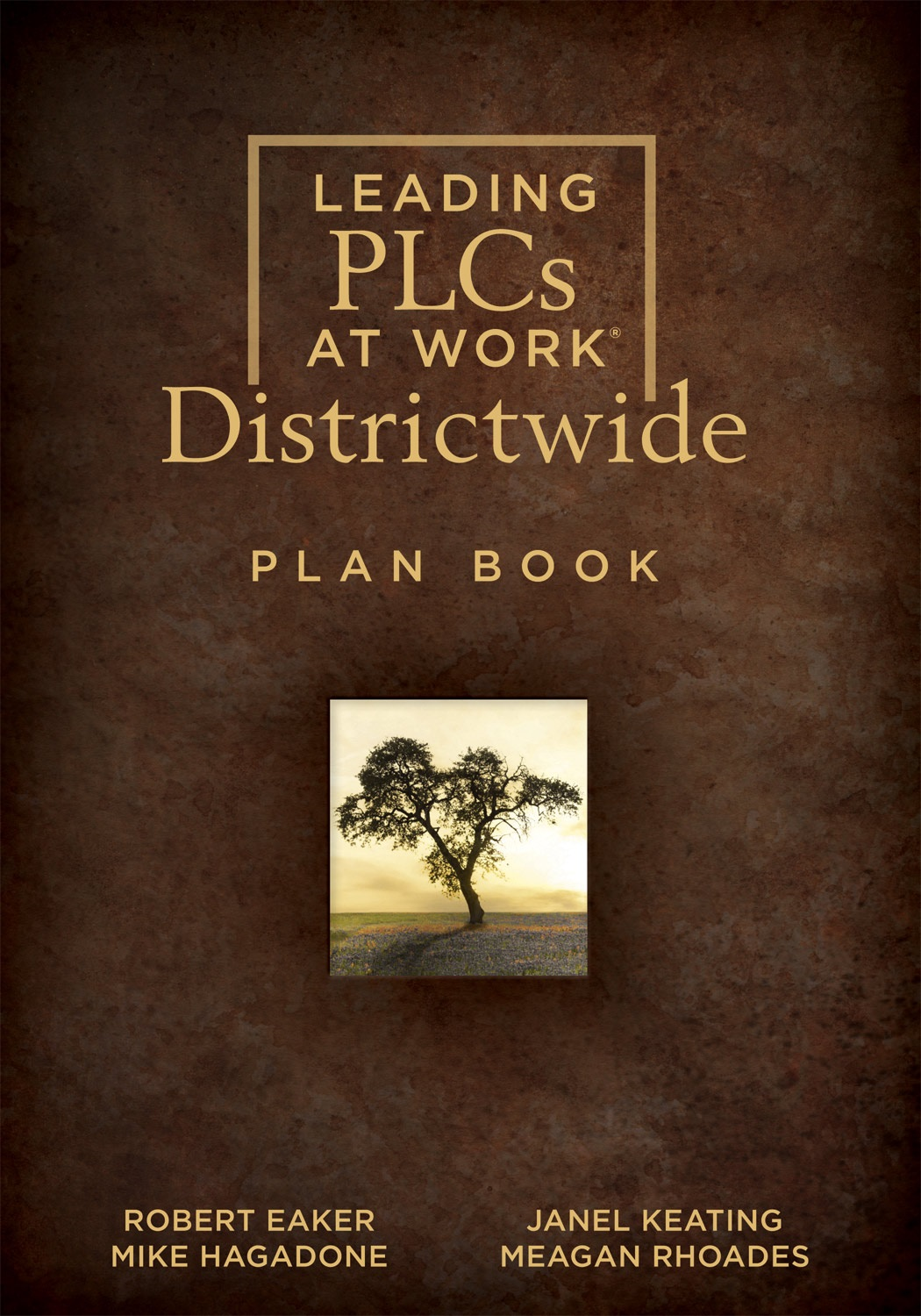 Leading PLCs at Work® Districtwide Plan Book