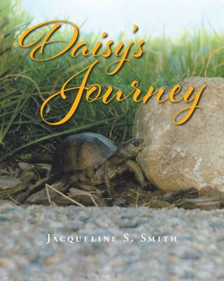 Daisy's Journey